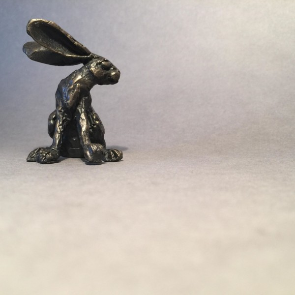 tiny turning hare